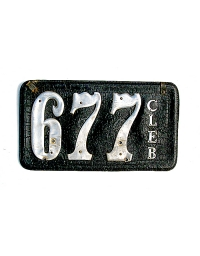 old Texas leather license plate 11
